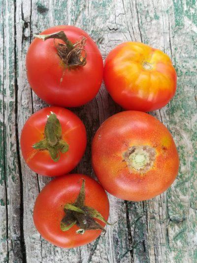 Heirloom Salad Tomato 1kg